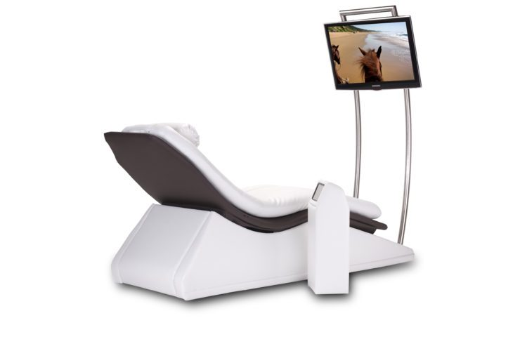 Motion Lounger